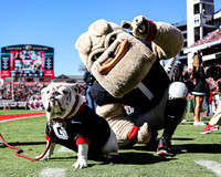 Uga X and Hairy Dawg at blackout game.